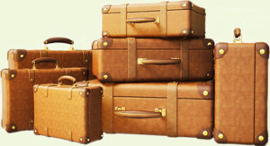 Carrig Luggage Service