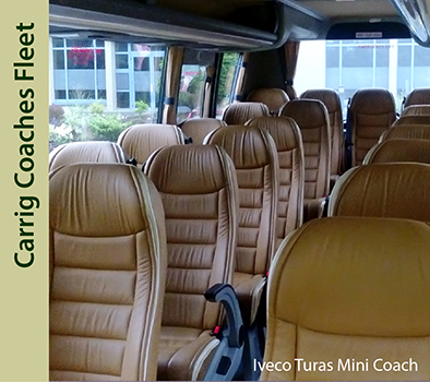 Carrig Coaches Mini Coach Hire