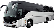 Carrig Coaches Executive Coach